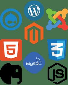 webfrog-website-building-230×289